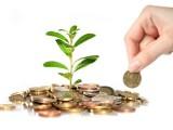 5 intrebari esentiale pentru inceputul unei afaceri